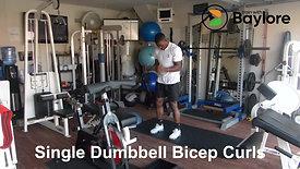 Single Dumbbell Bicep Curls