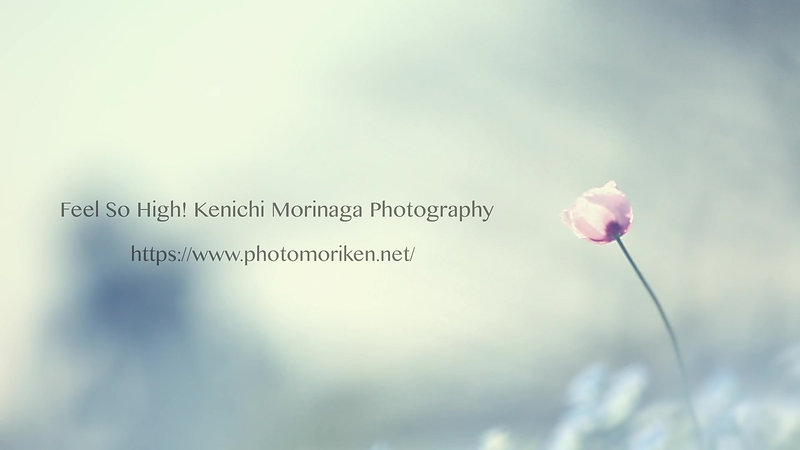 Feel So High! Kenichi Morinaga Photography