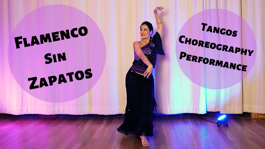Online Classes - Flamenco Sin Zapatos - $25.00 Monthly Subscription
