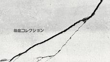 HAKONIWA COLLECTION  Sasama 2017