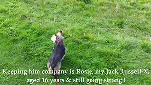 Rufus & Rosie take a Walk