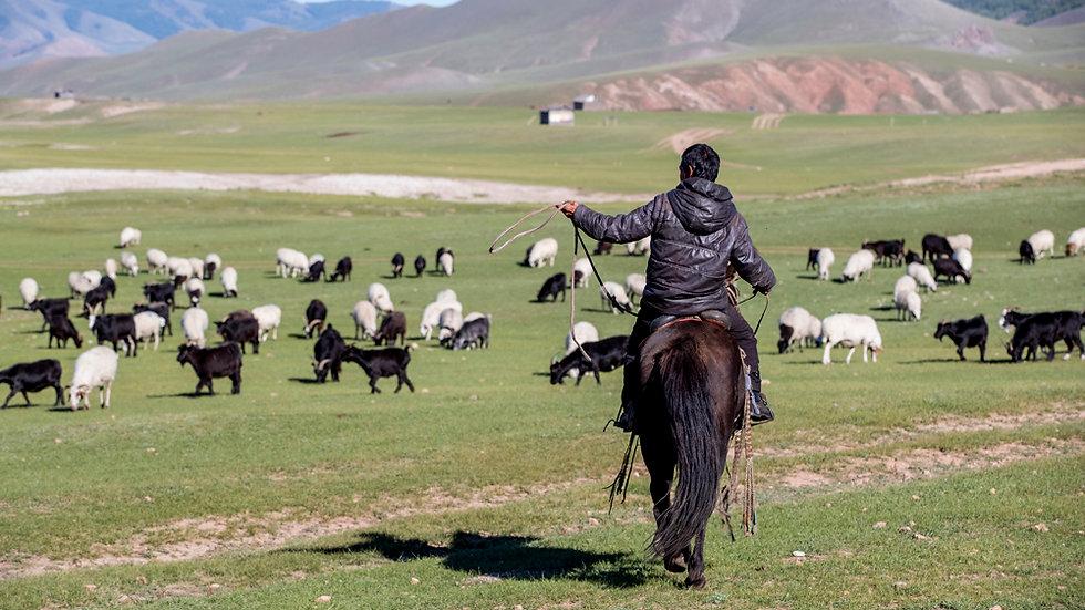 Mystinen Mongolia