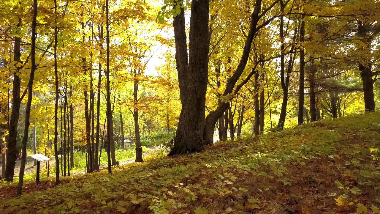 Sentiers Art-et-Nature-des-Appalaches