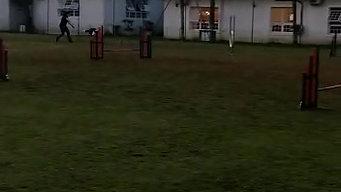 Olivia derruba uma