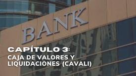 CAPÍTULO 3: CAJA DE VALORES Y LIQUIDACIONES (CAVALI)