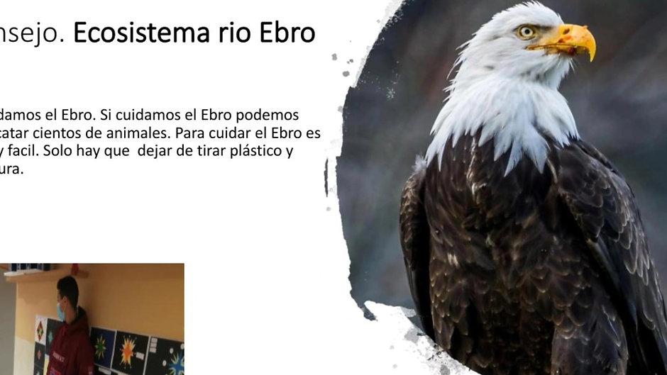 Video 1ºESOBiología-Geología. Cuidar los ecosistemas. Leo y entiendo.