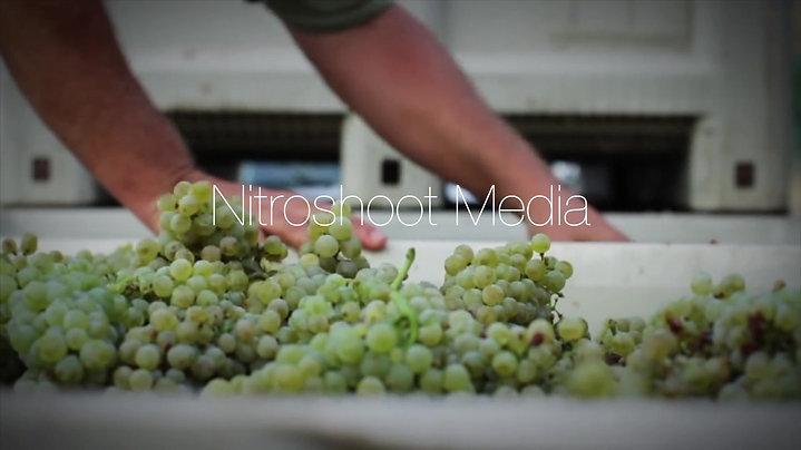 Promo Winery