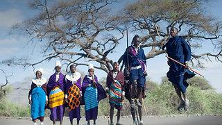 Tanzania Journeys Serengeti