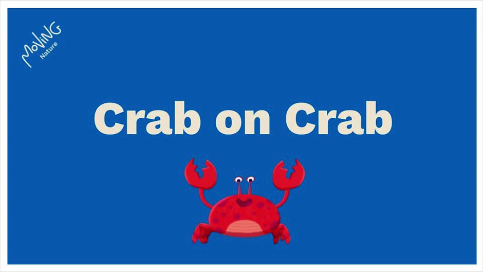 Crab Channel