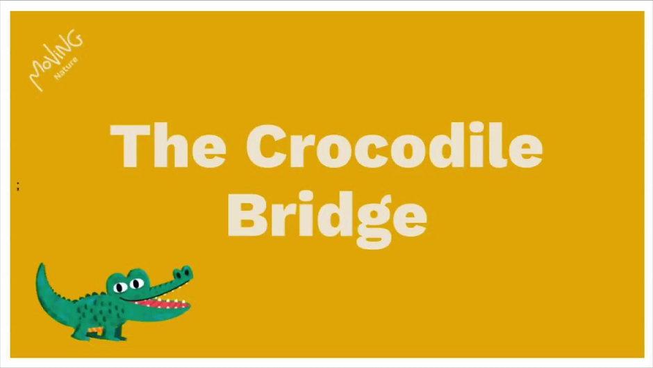 The Crocodile channel