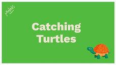 Catching Turtles