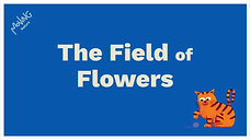 The Field of Flowers