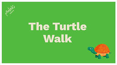 The Turtle Walk