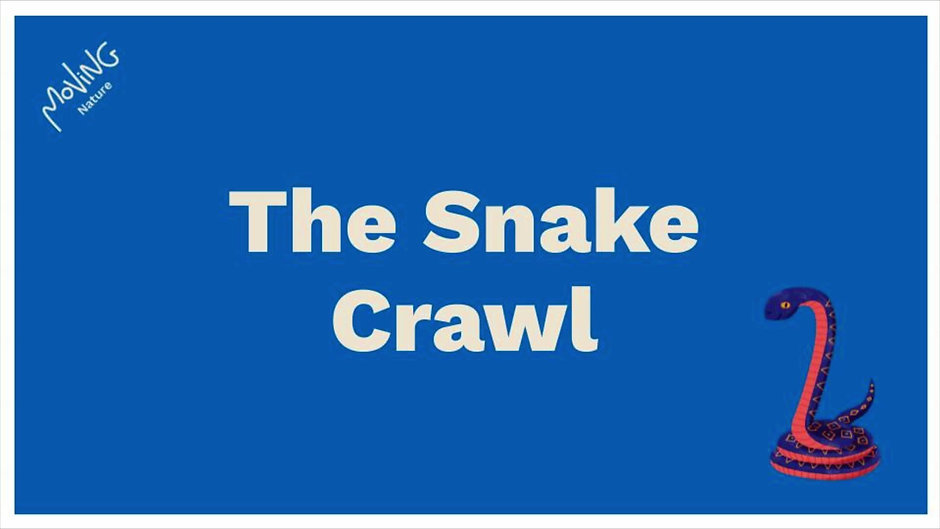 The Snake Channel