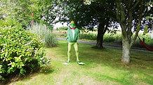 Fine Fat Frog Prince Albert