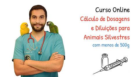 Apresentação Curso Cálculo de Dosagens e Diluições