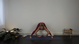 Vinyasa Yoga - Take it easy flow