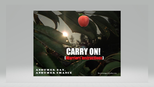 CARRY ON (Warrior instructions)