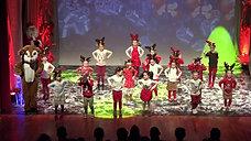 Westport Christmas Show 2019