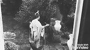 "Japanism ""Bombazine Sep 19"""