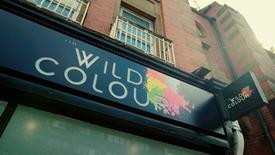 THE WILD COLOUR - HAIR SALON