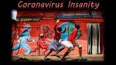 Coronavirus Insanity