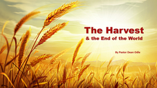 The Harvest & the End of the World