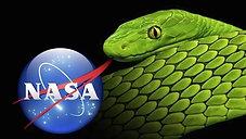 Science Venom, Flat Earth & Bible Hermeneutics