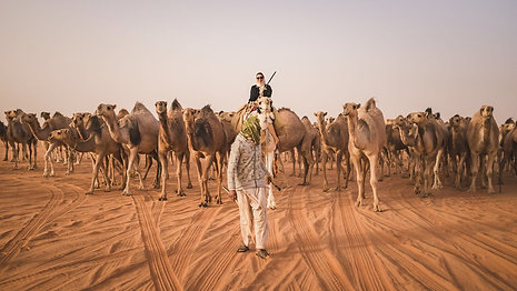 THE CAMELS OF ARABIA  (Vice)