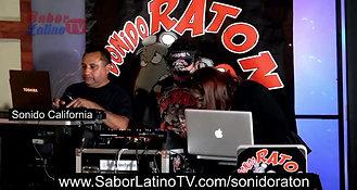 SONIDO RATON