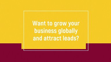 Want to grow your business globally and attract leads