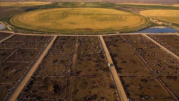 Reduce land use