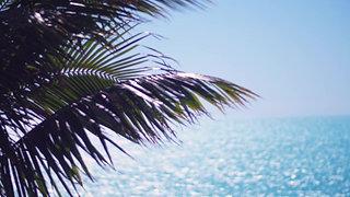 VILLA ROI SOLEIL Turks and Caicos Islands
