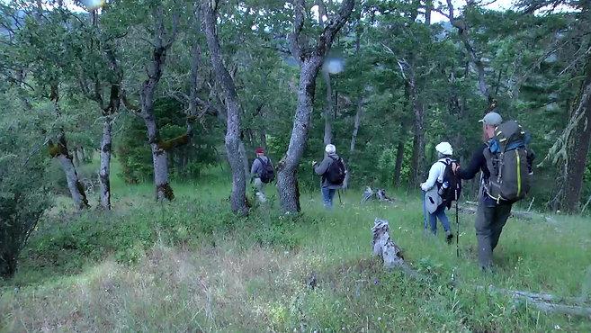 Walking the Wild Applegate Trailer