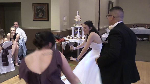 DeMalia Nieves Wedding Highlights