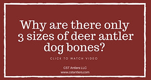 Why are there only 3 sizes of deer antler dog bones?