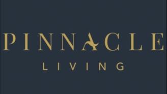 Pinnacle  LISA