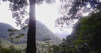 Bac Son - Une vallée discrète du Nord Vietnam
