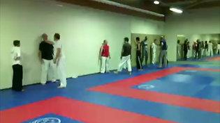 Karate defense