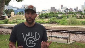 Wild & CO Interview