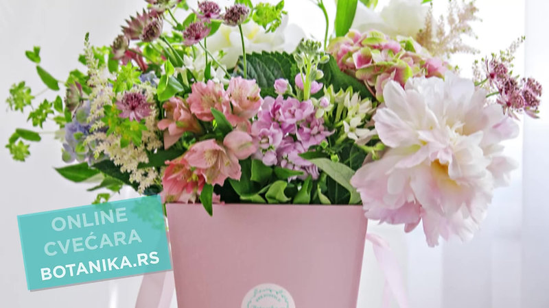 About us - Botanika.rs Flower Shop adv.video