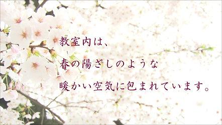 さくらゼミCM春陽麗和編