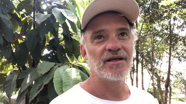 Depoimento Henrique Rajão