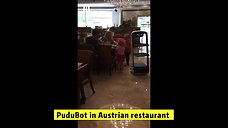 Pububot in many Countries