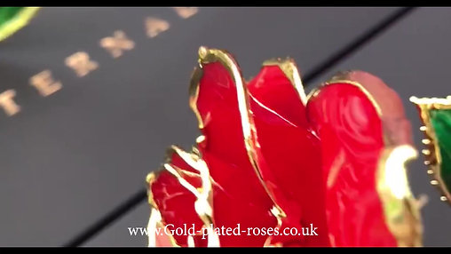 4 ROSES VIDEO