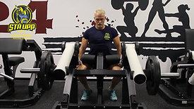 Seated Dips Plate Loaded