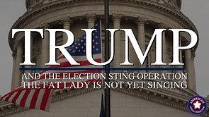 11/11/20 | MSOM Special Report 15: Trump and The Election Sting Operation - The Fat Lady is not Yet Singing