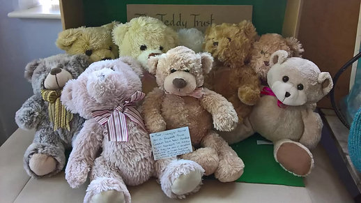 The Teddies We Love