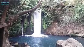 Parco Nazionale di Banias - fra storia e cascate