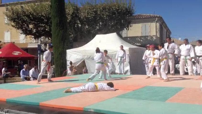 Démo de Taï-Jitsu 2014